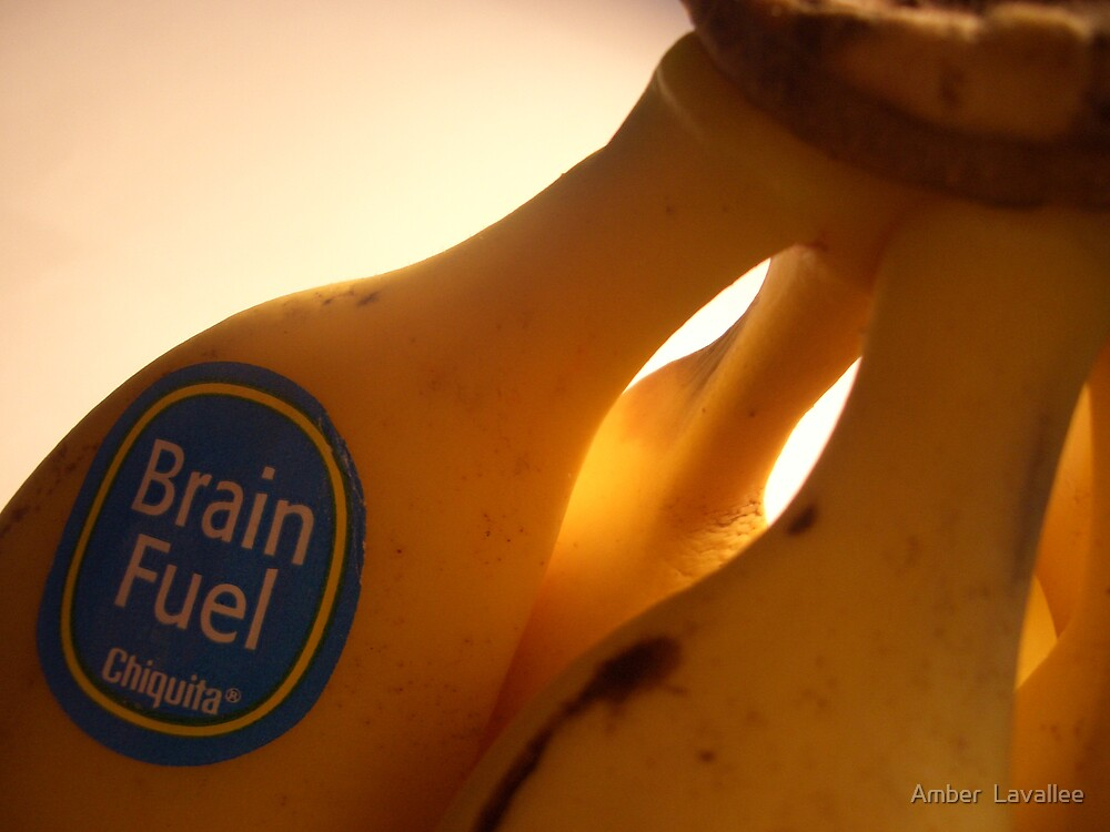 Brain Fuel by Amber  Lavallee
