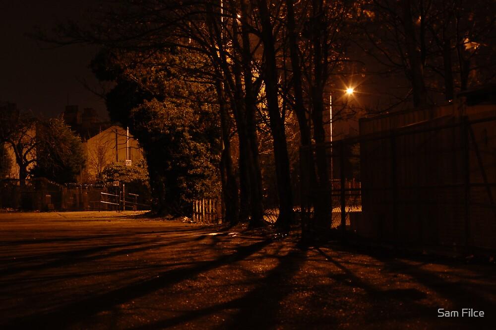 Lamp Light #1 by Sam Filce