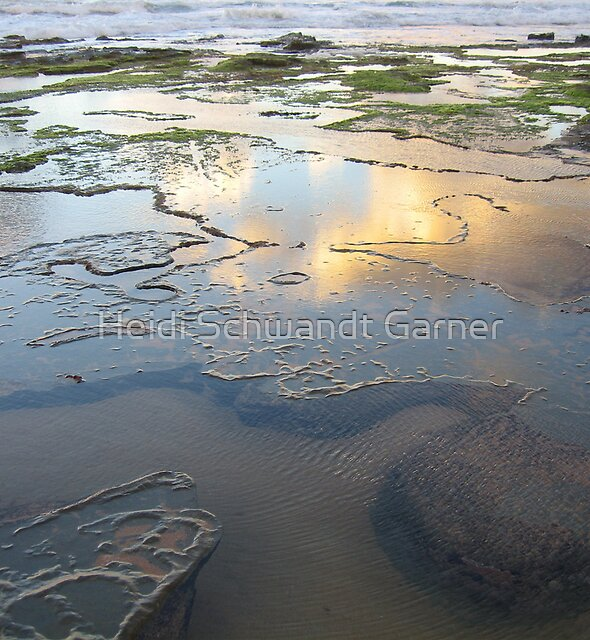Rockpools and Reflections by Heidi Schwandt Garner