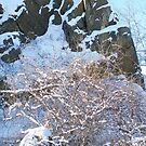 Snow Adorned Rocky Cliff by Gillwho