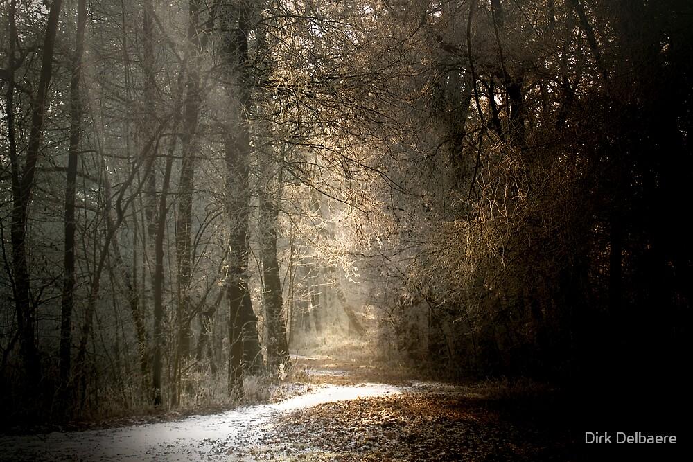 Last snow? by Dirk Delbaere