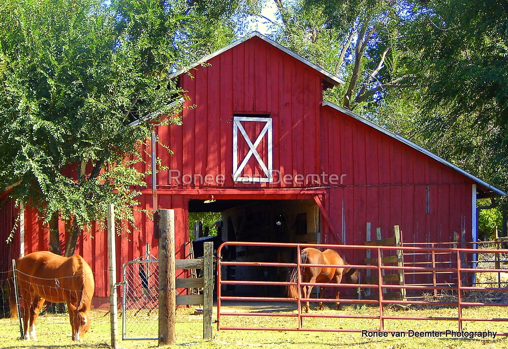 Another red barn in Oklahoma by Ronee van Deemter