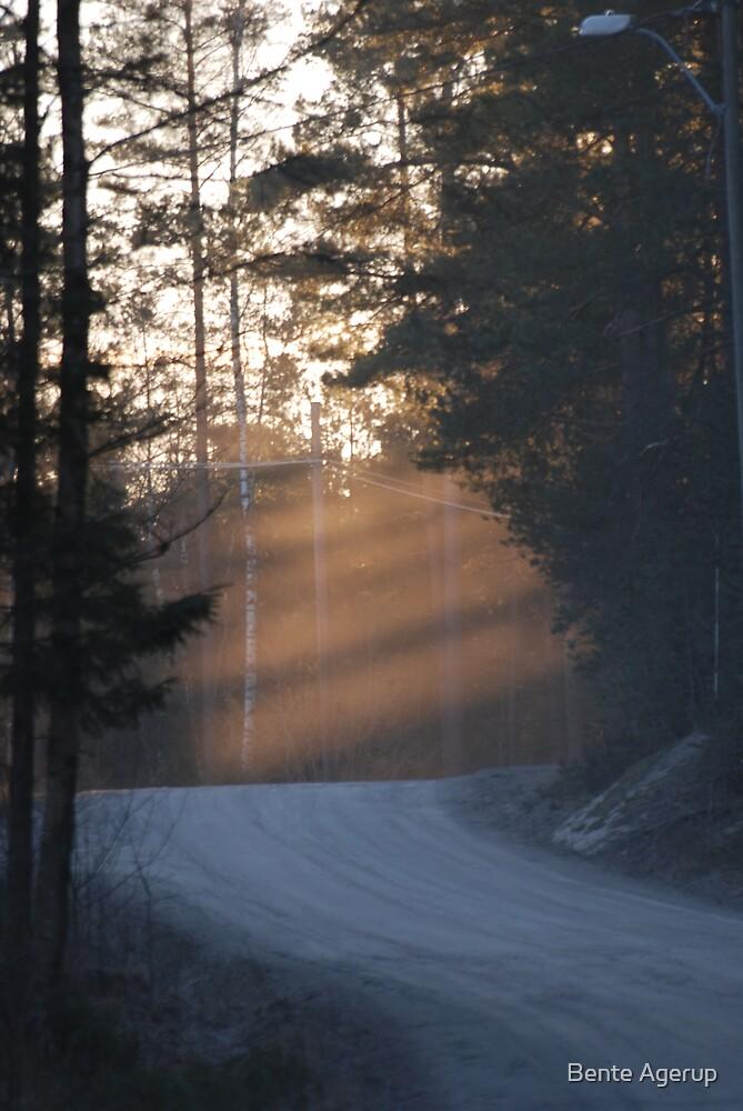 Sunbeams  by Bente Agerup