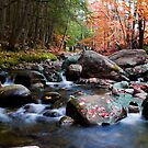 Splendid Brook by Jeff Palm Photography