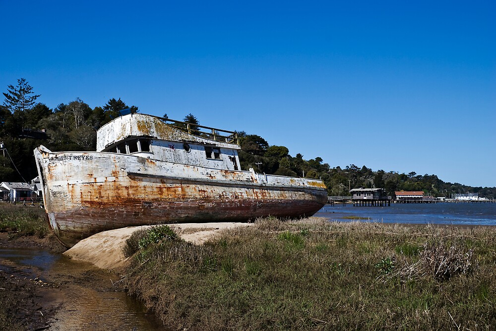 Derelict Fishing Boat, Inverness, California by MarkEmmerson