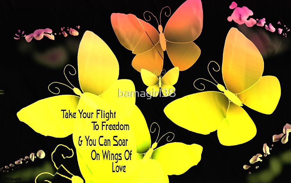Freedom Flight by bamagirl38