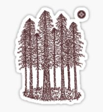 Cathedral Grove (Coastal Redwoods) Sticker