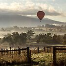 Gates, Fields, Fences and Balloon by JeremyF