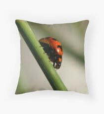 Busy Throw Pillow