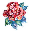Rose Painting by ValerieBentley