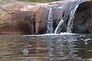Granite Falls  by mspfoto