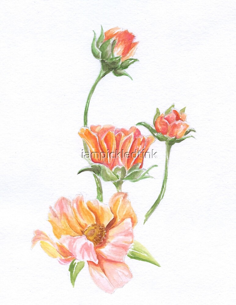 Watercolor Wildflower- Prim by iampickledtink