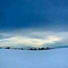Winter Blues by Brian R. Ewing