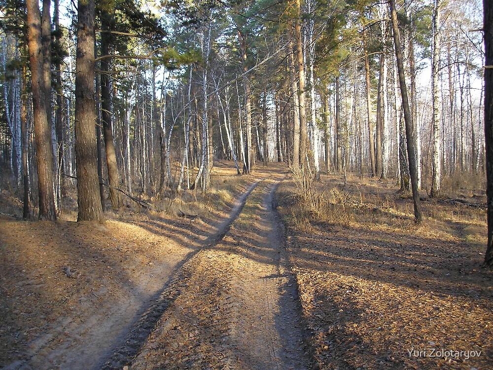 small tale about roads by Yuri Zolotaryov