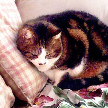 Annie's Cat by rozmcq