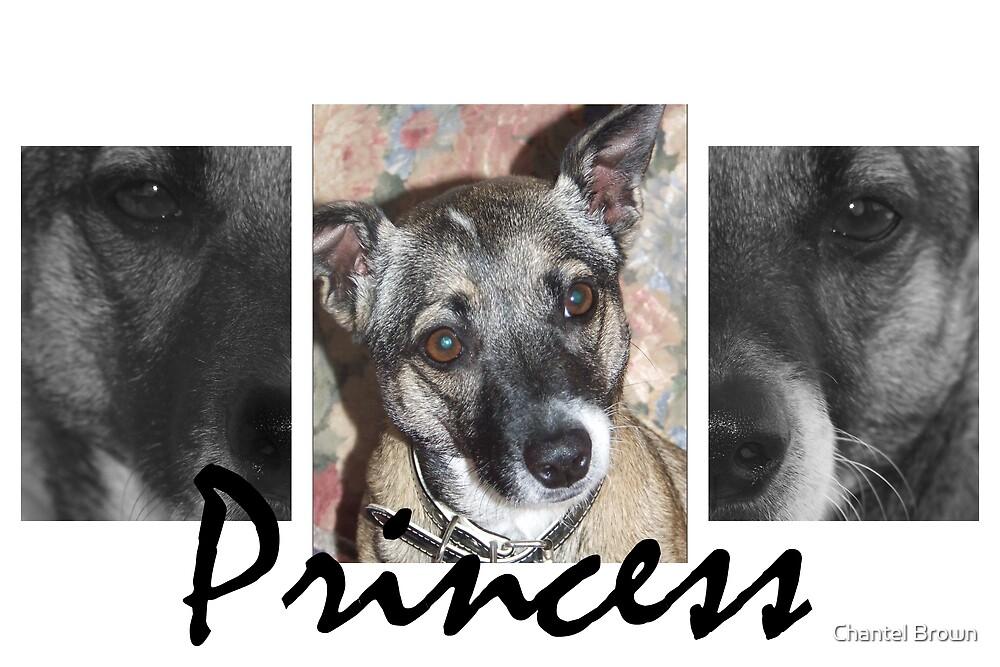 Princess by Chantel Brown
