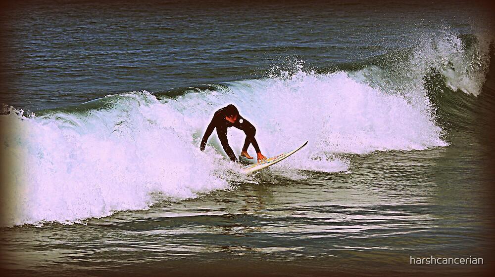 Surfs Up by harshcancerian