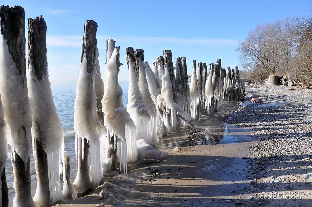 Icy Breakwater by Debbie Stobbart