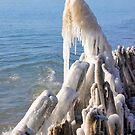 Icy Mane by Debbie Stobbart