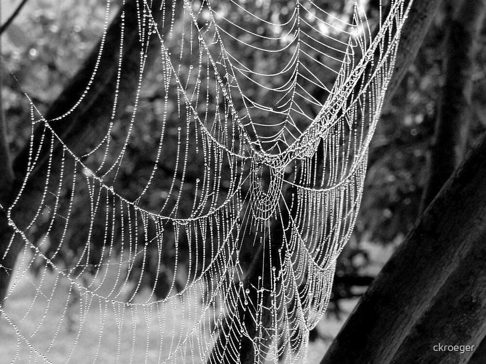 Crystal web by ckroeger