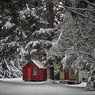 Winter Retreat by Peter Kurdulija