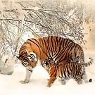Tigers by NeedThreads
