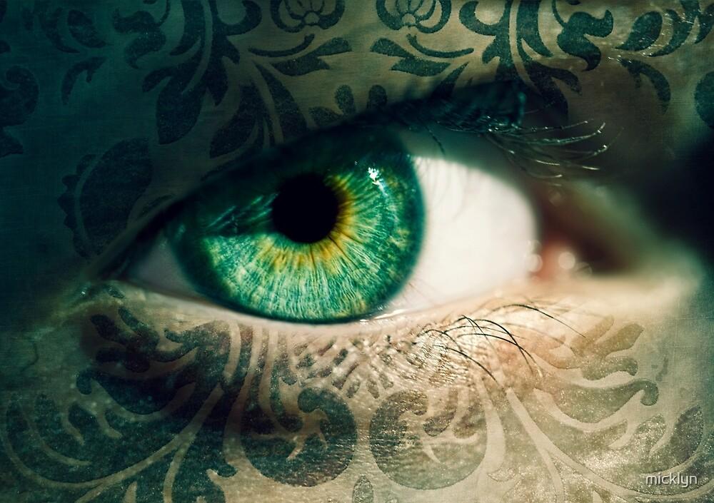 An Eye for Art by micklyn