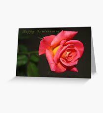 Happy Anniversary - Rose Greeting Card