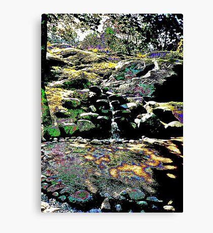 Finnish stream in Autumn Canvas Print