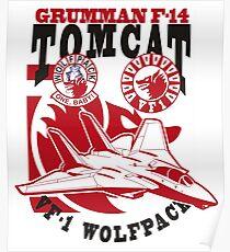 VF-1 Wolfpack Poster