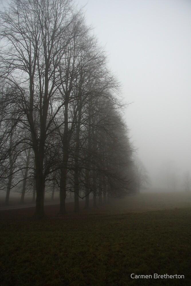 Row of trees by Carmen Bretherton