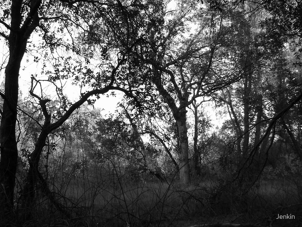 Churn Creek Oaks by Jenkin
