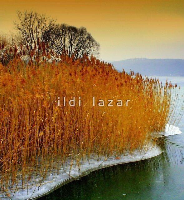 Landscapes by i l d i    l a z a r