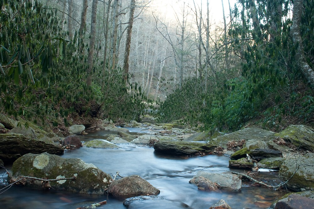 Roaring fork river by Forrest Tainio
