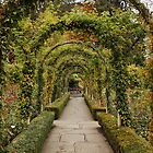 Through the Arch by AnnDixon