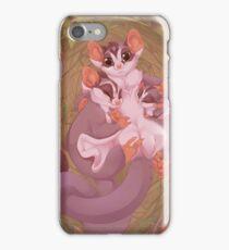 Sugar Gliders iPhone Case/Skin