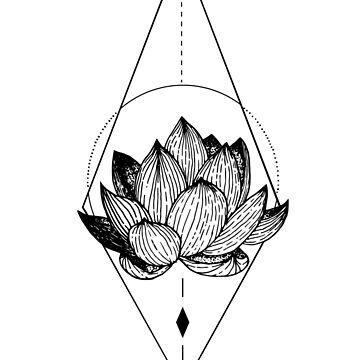 Lotus by anxlih