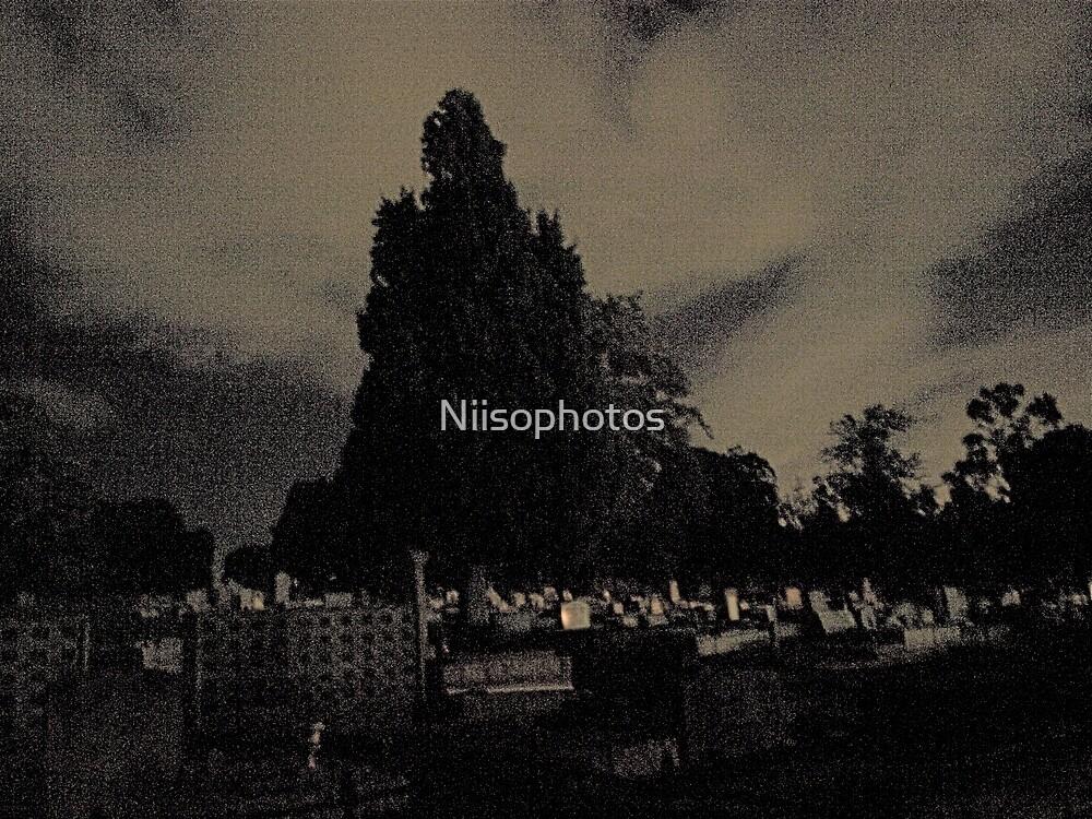 cemerteary  in darkness  by Niisophotos