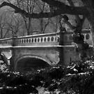 park bridge. central park, nyc by tim buckley | bodhiimages