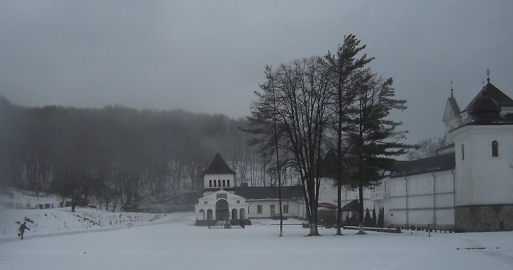 Monastery life by Mykola