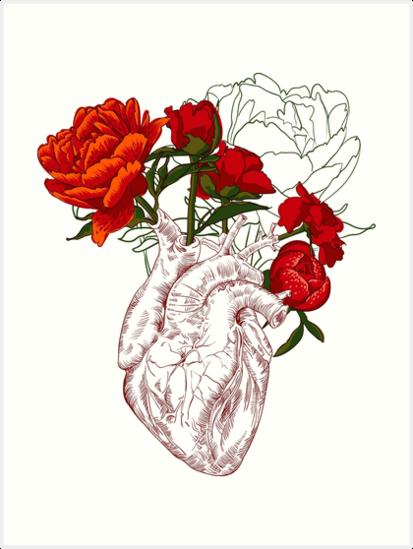 Láminas Artísticas Dibujo Corazón Humano Con Flores De Olgaberlet