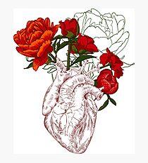 Zeichnen Menschliches Herz mit Blumen Fotodruck