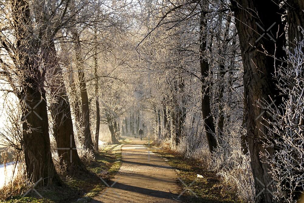 A Walk by AnnieSnel