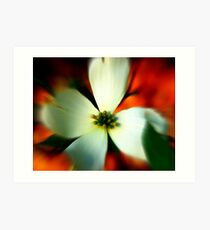 Blur of Spring Art Print