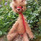 Ambrose Alpaca Llama by Penny Bonser