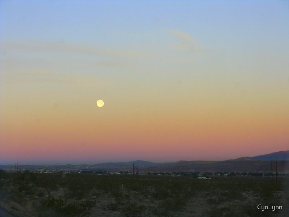 Moon over the Mojave Desert by CynLynn