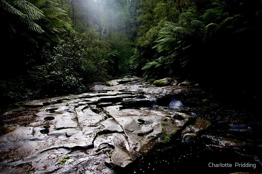 Erskine Waterfalls by Charlotte  Pridding