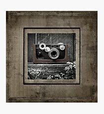 Argus Photographic Print