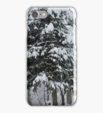 Up to 18 inches of snow overnight iPhone Case/Skin