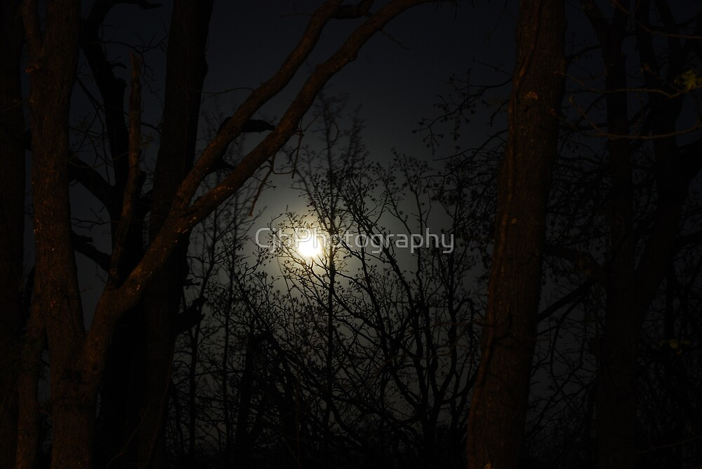 Silvery Moon by CjbPhotography